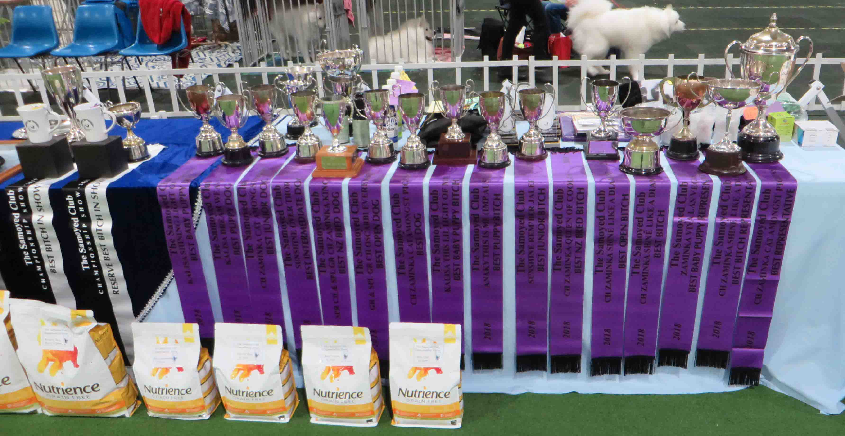 Samoyed Day 20 July 2019 Annual Awardws table